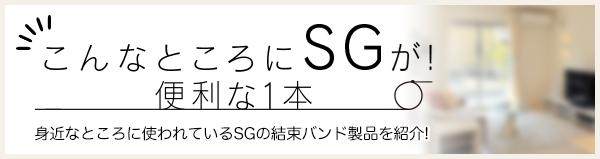 こんなところにSGが